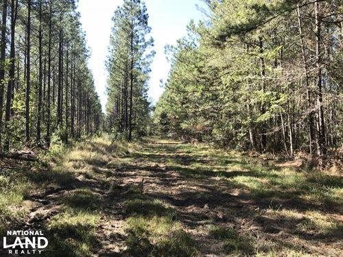 Ridgeville Home Sites : Ridgeville : Dorchester County : South Carolina
