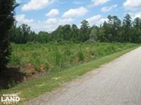 Devil's Backbone Road Homesite Acre : Leesville : Lexington County : South Carolina