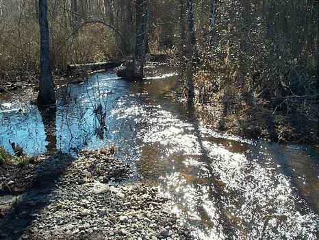 121 Acs Pond, Creek, Timber : Kite : Johnson County : Georgia