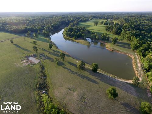 Mason Ferry Farm & Lake Tract : Wilmer : Mobile County : Alabama