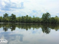 Twin Ponds Farm And Hunting Estate : Shiloh : Sumter County : South Carolina