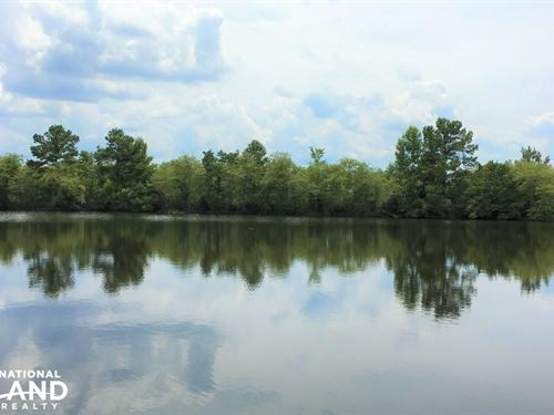 Twin Ponds Farm And Hunting Estate : Shiloh : Sumter County : South Carolina