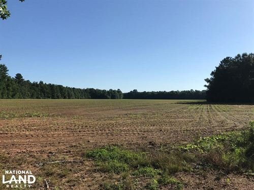 Caledonia Farm And Forest : Caledonia : Lowndes County : Mississippi