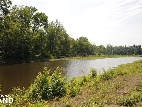 Catfish Creek Hunting Timber Invest : Marion : South Carolina