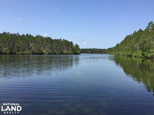 Jeff Hamilton Lake Tract C : Mobile : Alabama
