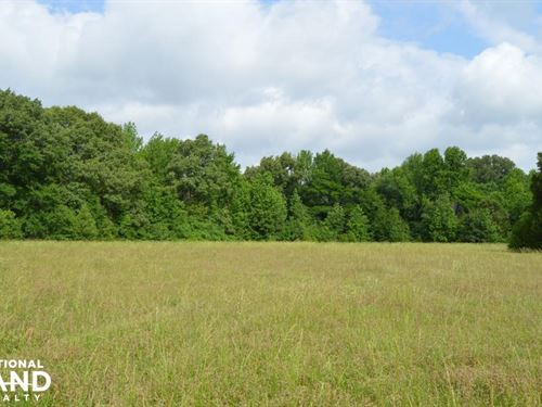 Austin Road Wooded And Pasture Land : Nesbit : Desoto County : Mississippi