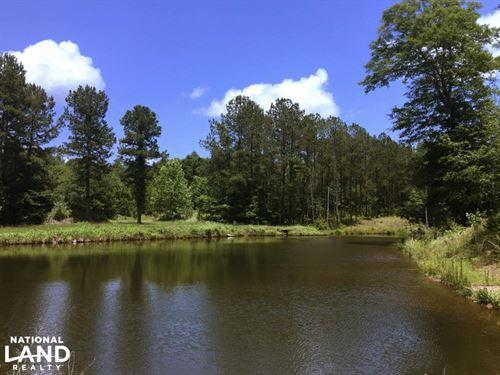 Pilgrims Rest Tract : Jackson : Clarke County : Alabama