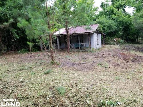 Moores Creek Hunt Camp : Maple Hill : Pender County : North Carolina