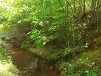 Hwy 25 Recreational/Timber Homesite : Edgefield : Edgefield County : South Carolina