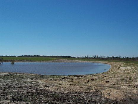 647 Acres w/ 5 Ac Pond : Soperton : Treutlen County : Georgia