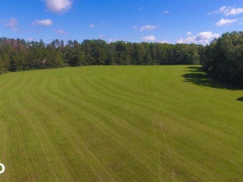 Cottage Grove Farm 107+/- Acres : Calera : Shelby County : Alabama
