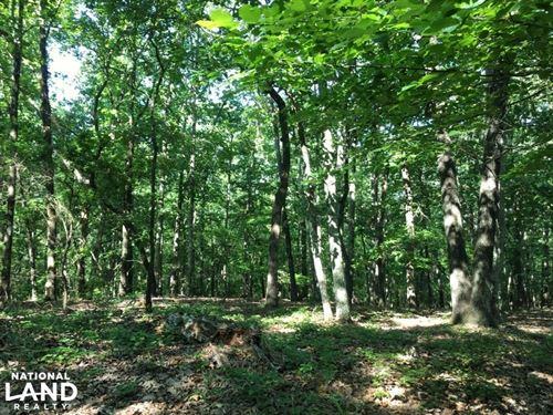 Martin Spur Estate : Northport : Tuscaloosa County : Alabama