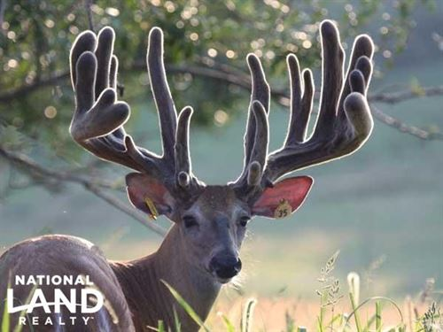 Whitetail Dreams Hunting Resort : Fulton : Callaway County : Missouri