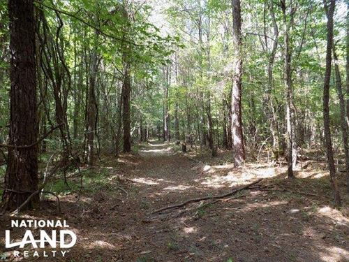 Coal Bluff Timber Tract : Brandon : Rankin County : Mississippi