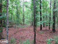 12.16 Acres Midway Rd, Terry MS : Terry : Hinds County : Mississippi