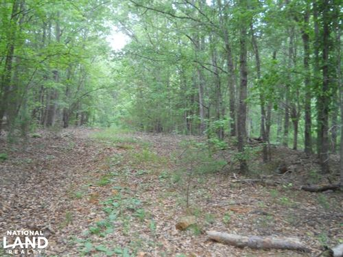Private Acreage On Horse Creek : Pelzer : Greenville County : South Carolina