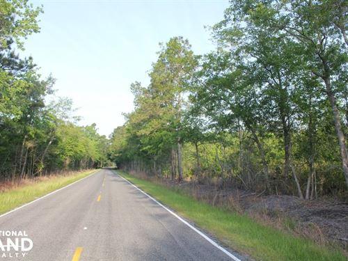 Large Acreage Home Site And Minifar : Summerville : Berkeley County : South Carolina