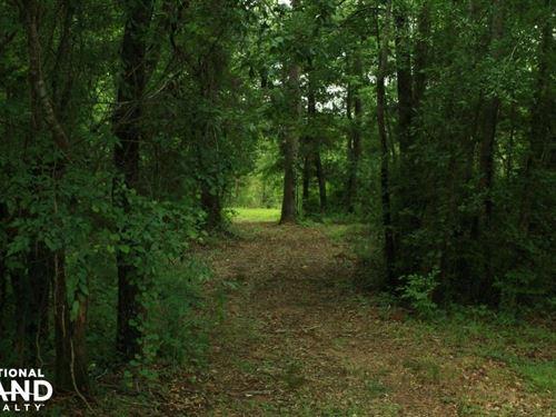 Hwy 69 Hunting And Fishing Retreat : Havana : Hale County : Alabama