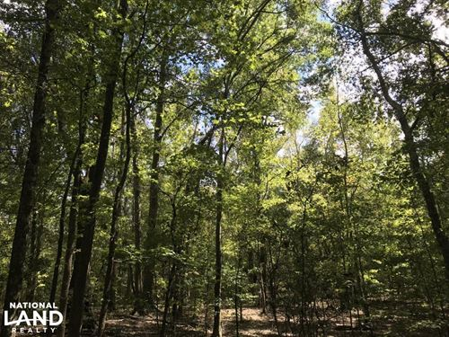 Hwy 178 Homesite : Anderson : South Carolina