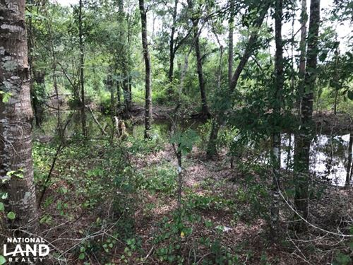 Hilltop Homesite on Creek : Dublin : Laurens County : Georgia