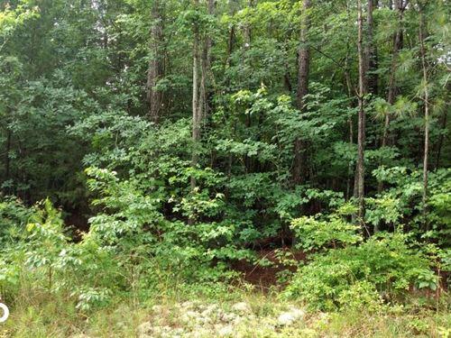 Taylors Chapel Road 1 : Sanford : Chatham County : North Carolina