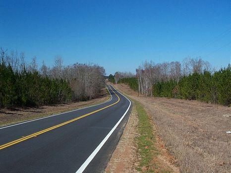 422 Ac, Hwy 80, Timber, Pond : Adrian : Johnson County : Georgia