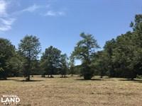 Bonneau Mini Farm : Bonneau : Berkeley County : South Carolina