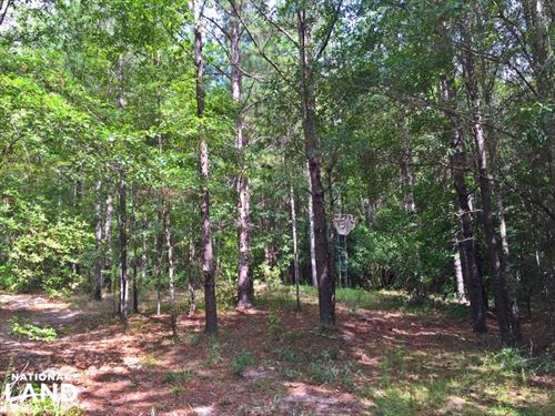 China Grove Weekend Retreat : Ramer : Pike County : Alabama