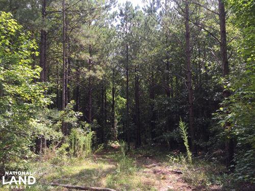 China Grove Homesite : China Grove : Pike County : Alabama