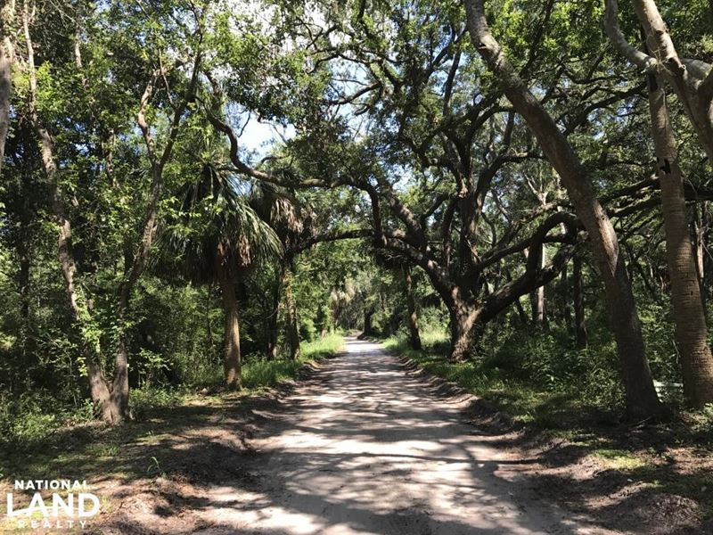 McTeer Drive St. Helena Lot : Saint Helena Island : Beaufort County : South Carolina