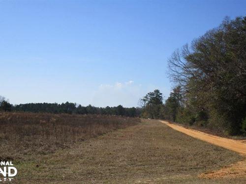 15 Acres Stewart County, GA Farmlan : Lumpkin : Stewart County : Georgia
