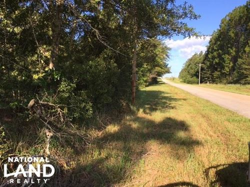 Bluegill Hill : Loxley : Baldwin County : Alabama