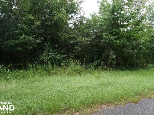 Sandy Fork Road Homesite Parcel 1 : Moundville : Hale County : Alabama