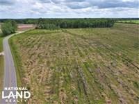 Cabin Swamp : Columbia : Tyrrell County : North Carolina
