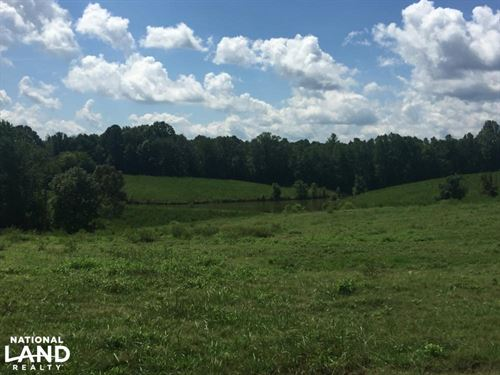 Cook Creek Road Cattle Farm : Russellville : Colbert County : Alabama