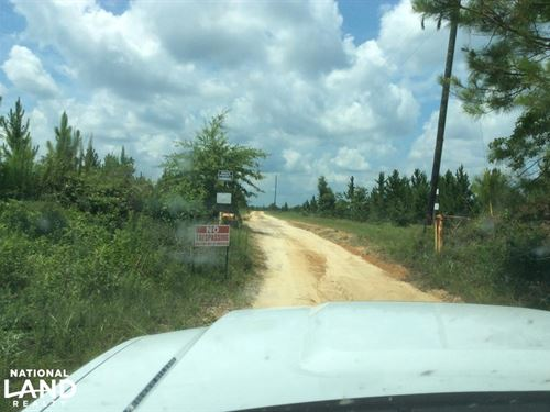 Stone County 177 Acres : Wiggins : Stone County : Mississippi