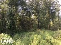 Talladega Timber, Commercial & Home : Talladega : Talladega County : Alabama