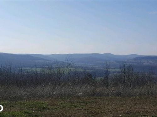115 Acres Ozark Mountain Views : Compton : Carroll County : Arkansas