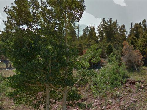 Costilla County, Co $25,000 Neg : Fort Garland : Costilla County : Colorado