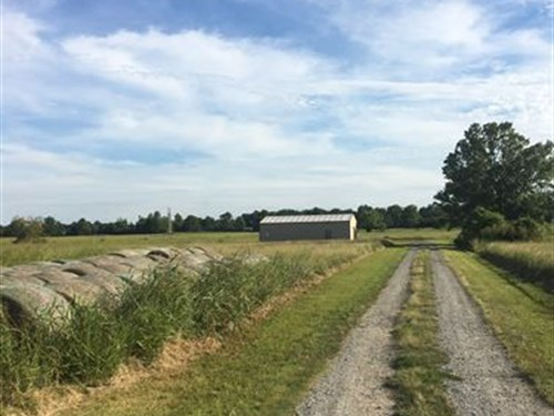 Great Large Lot : Scott : Pulaski County : Arkansas