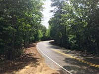 Skipper Creek Tract-Tract 1598 : Hornsby : McNairy County : Tennessee