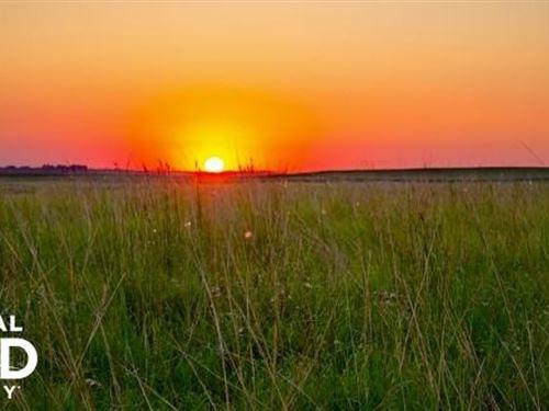 Cropland & Grass For Sale, Cheyenn : Kit Carson : Cheyenne County : Colorado