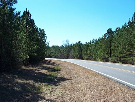 41 Acres, Timber, Creek, Paved Road : Adrian : Johnson County : Georgia