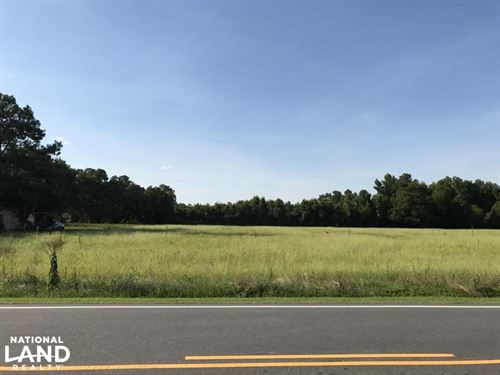 Old Fayetteville Road Hunting Land : Clarkton : Bladen County : North Carolina