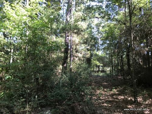 25.7 Ac - Wooded Home Site Tract : Jasper : Texas