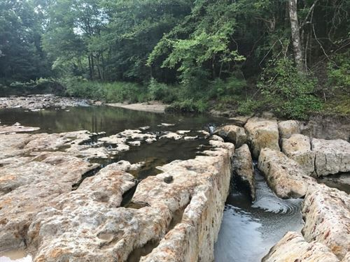 Buffalo Falls 153 Acres Wilkinson : Gloster : Wilkinson County : Mississippi