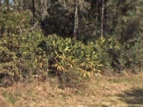 Citrus County, Fl $15,000 Neg : Crystal River : Citrus County : Florida