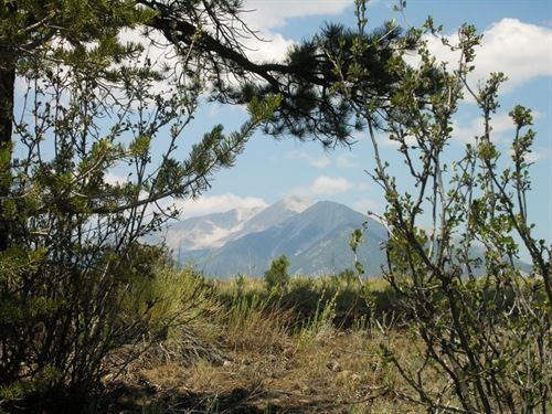 9258883, Nathrop, Colorado Land Fo : Nathrop : Chaffee County : Colorado