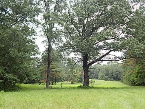 335.3 Acres In Yazoo County : Vaughn : Yazoo County : Mississippi