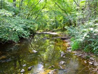 354Ac Timberland/Recreational Tract : Hickory Grove : York County : South Carolina